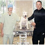 Ветеринарная клиника Харьков 093-408-09-36 фото