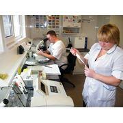 Клиническая и биохимическая лаборатория анализ газов крови фотография