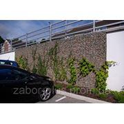 Стена из Габионов фото