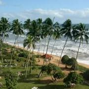 Туры в Шри Ланку фото
