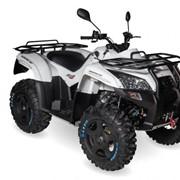 Прокат квадроциклов Baltmotors-SMC Jumbo 700 LUX фото
