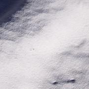 Известняк молотый (крупа, мука) фото