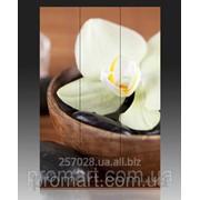 Ширма одностороння на полотні 120х180 см Біла орхідея код SH-098-120-180 фото