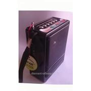 MP3 колонка+FM-радио NS-018 фото