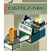 Liniile pentru fabricarea lazilor din carton pentru fructe si legume фото