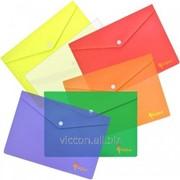 Папка-конверт на кнопке, A4, forpus, ассорти FO21611 фото
