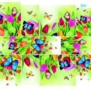 """Dona Jerdona слайдер дизайн """"Бабочки на цветах"""" 369 фото"""