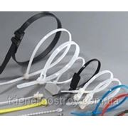 Стяжки NCT-100x2.5 фото