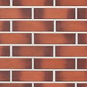 Облицовочная плитка Lode CAMELEO красно-пестрая гладкая 250x65x10 фото
