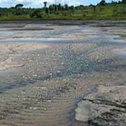 Природный тринидад-асфальт фото