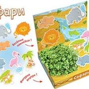 Сафари Живая открытка Happy Plant наборы для выращивания фото