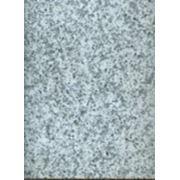 Гранит (КНР) серый, плиты облицовочные, 300х600 фото