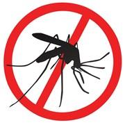 Уничтожение комаров. Обработка участка от комаров фото