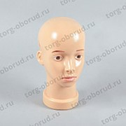Голова женская для шапок и головных уборов с макияжем, глаза карие Г-207(кар) фото
