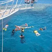 Морская прогулка на яхте и обучение дайвингу в Шарм эль Шейхе фото