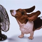 Вентиляторы фото