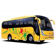 Автобусы школьные Zonda фото