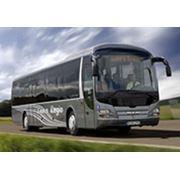 Автобусы MAN фото