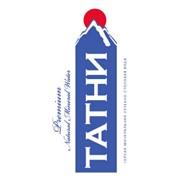 Графическая разработка логотипа фото