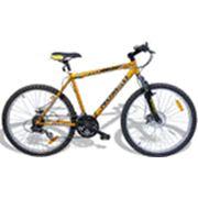 Прокат велосипедов в астане велосипеды фото