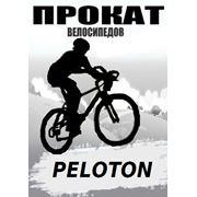 Прокат аренда горно-туристических велосипедов фото