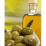 Оливки с косточкой в Молдове фото