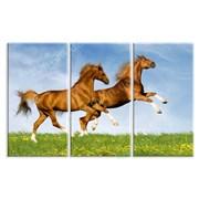 Картина Радость лошадей фото