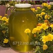 Мед из цветов липы фото