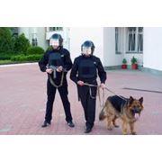 Охрана общественного порядка и безопасность фото