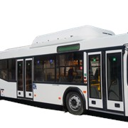 Автобус пассажирский МАЗ 103965 фото