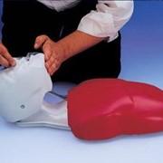 Тренажер серцево-легеневої реанімації (Реанімаційний торс дорослого) фото
