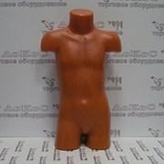Торс объемный детский (Ромик), MP106/ТД-103 фото