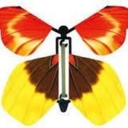 Летающая бабочка Magic Flyer - сюрприз фото