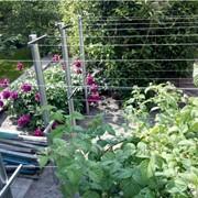 Арки, навесы, садовая мебель, качели, нержавеющая сталь фото