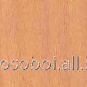 Самоклейка (бук св) 200-2658 4007386091895 фото