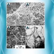 Углеродный наноструктурный материал Таунит фото