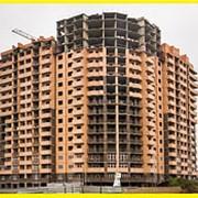 Каркасное строительство в Краснодаре фото