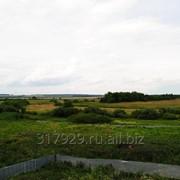 Земля в аренду под сельское хозяйство фото