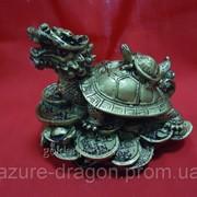 Статуэтка Дракон-черепаха под бронзу фото