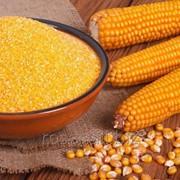Крупа кукурузная в мешках по 50 кг и фасовка фото