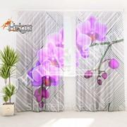 Лиловые орхидеи арт.ТФТ4819-h275 (145х275-2шт) фототюль (штора Шифон ТФТ) фото