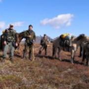 Конные туры на Камчатке фото