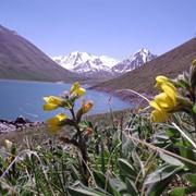 Отдых в Республике Казахстан, внутренний туризм, туристические слуги, туризм в Казахстане, отдыха на природе, турфирма, туристическая фирма, туристическое агенство, бронирование билетов фото