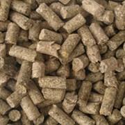 Комбикорма для сельскохозяйственных животных фото