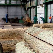 Деревопереработка. Еврошпон-Смыга Ровенская область. Украина фото