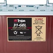Аккумуляторная батарея TROJAN 31-GEL, 12 Вольт, 102 (85) Ач фото
