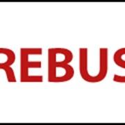 Система автоматизированная расчетов, ReBus фото