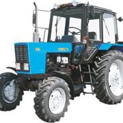 Трактор 82.1 МТЗ (БЕЛАРУС) фото