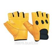 Перчатки для тренировок Арт. GSC-1164 фото