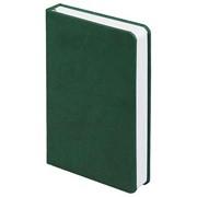 Ежедневник Basis mini, недатированный, зеленый фото